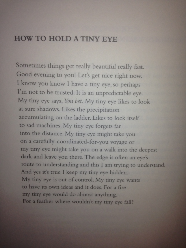 how to hold a tiny eye - emily pettit